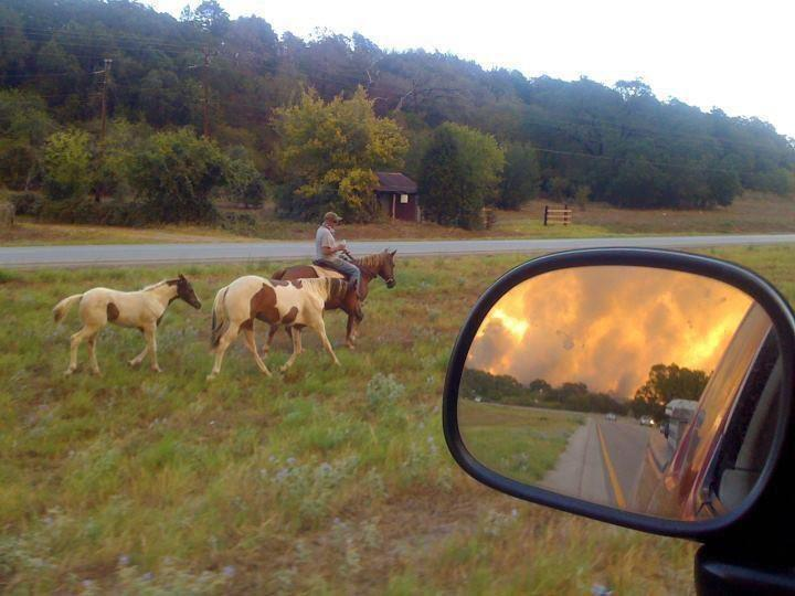Love of Texas in the rearview mirror.