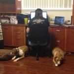 Marie and her sentinels, in SkipJack headquarters